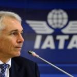 IATA: Украина виновата в катастрофе малазийского боинга