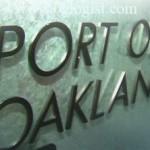 Сильная статистика по импорту в порту Окленд