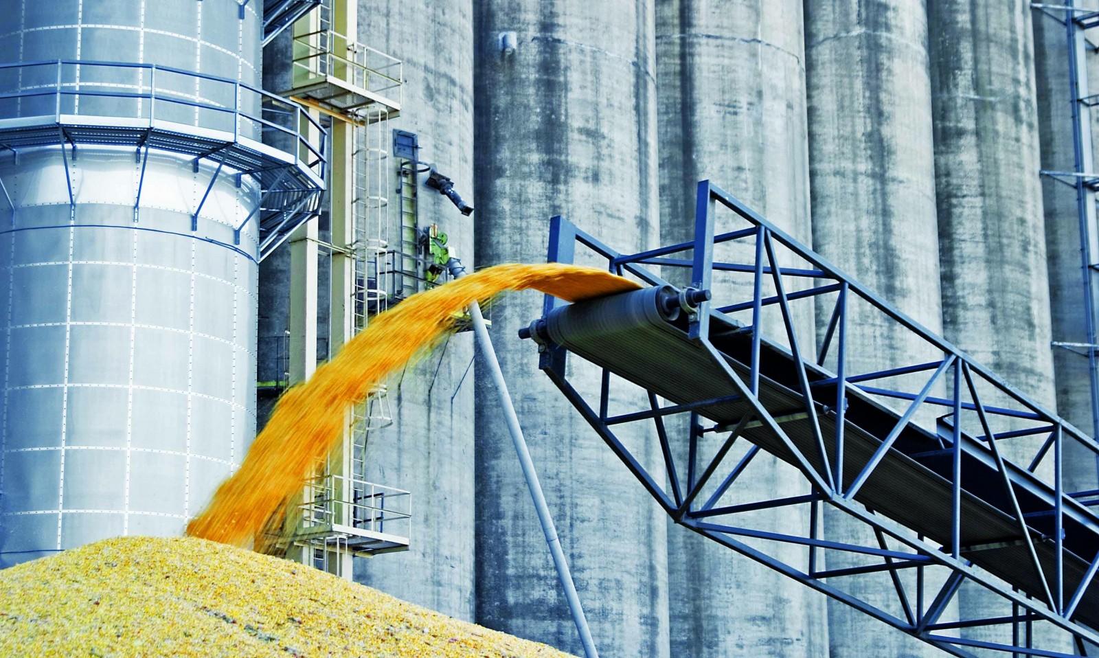 Как происходит процесс перевалки зерна и других грузов, требующих фумигации