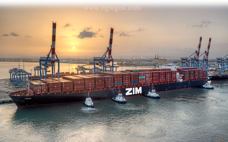 ZIM начинает сотрудничество с Alliance 2M